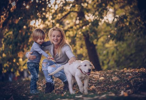 Mother and Son with Dog After Mother is Awarded Child Custody - Hampton & Royce, L.C.
